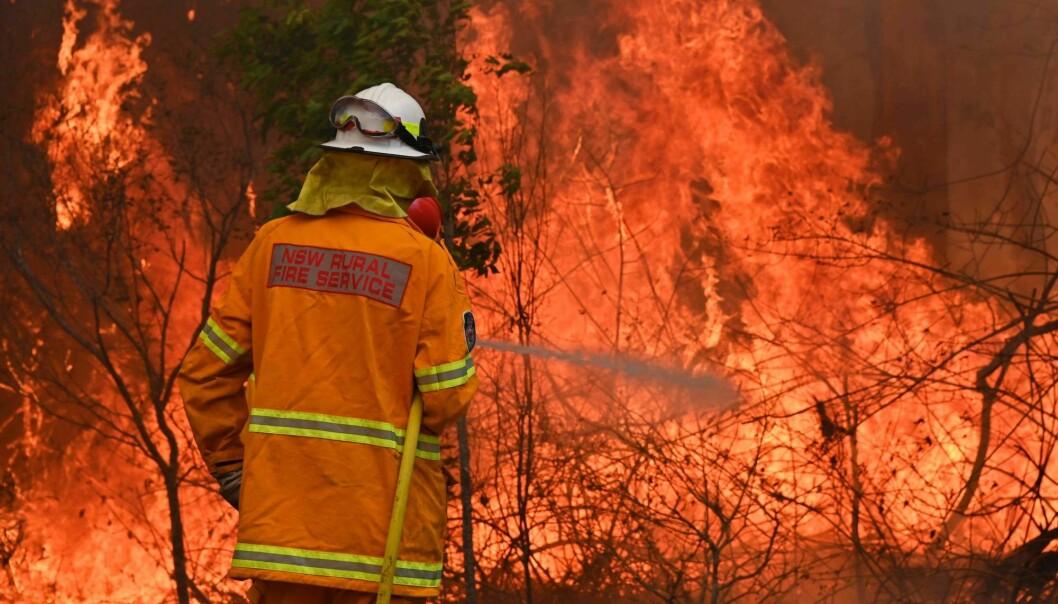 Skogbranner er vanlige i Australia, men brannen i 2019/2020 er blant de verste forskerne vet om.