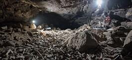 Forskere fant en grotte stappfull av knokler