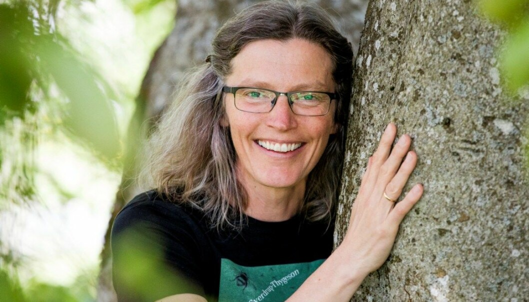 Anne Sverdrup-Thygeson kommer med ny oppslagsbok om norske insekter. - Insekter er vakre, morsomme og ikke minst avgjørende for våre liv, sier hun.