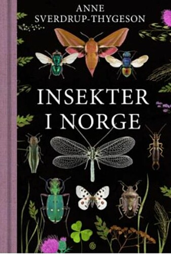 Boken Insekter i Norge kom ut i juli på Kagge Forlag