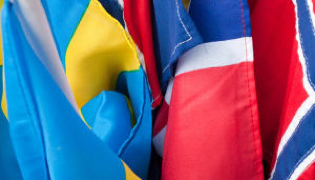Nordisk modell mot finanskrise