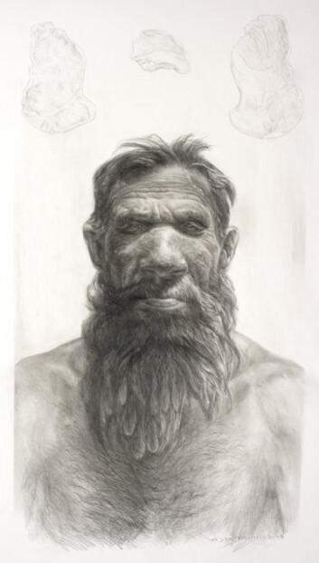 En tenkt framstilling av en ung, mannlig neandertaler. (Tegning: Kennis&Kennis 2009)