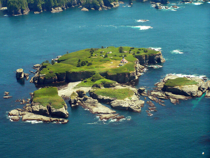 """""""Studien er gjennomført ved Tatoosh-øyene utenfor staten Washington i det nordvestre USA. (Foto:J.T. Wootton)"""""""
