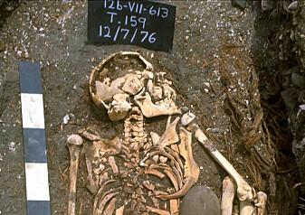 Forskere tror dette er verdens eldste offer for et haiangrep