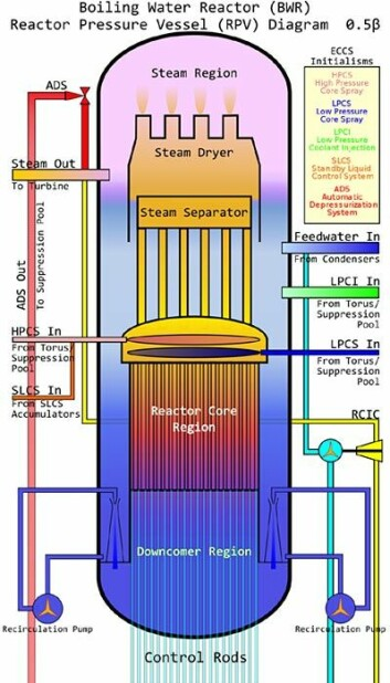 Reaktorene i Fukushima bruker vann som kjølevæske. Dette er en prinsippskisse av en slik reaktortype. Klikk på forstørrelsesglass for større bilde! (Figur: David C. Synnott, Creative Commons, se lisens)