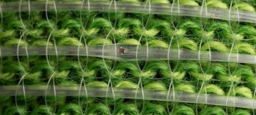 Programmerer fibrene i klærne til å sjekke helsa