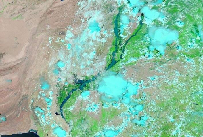 Satelittfoto tatt over Pakistan 15 august 2010. Både Indus- og Jehlum-elvener her blitt synlig større. De lyseblå feltene er skyer. (Foto: Nasa)