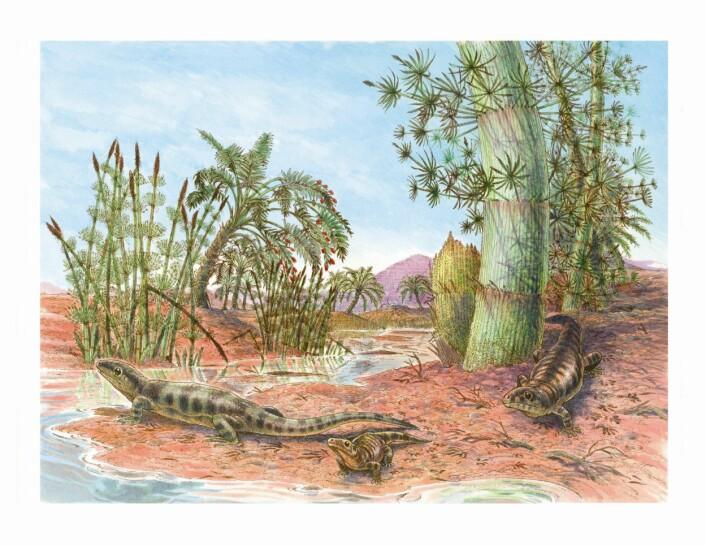 """""""Fordi reptiler ikke trenger vann for å legge egg kunne de bevege seg langt inn på land på superkontinentet Pangaea. (Illustrasjon: James Robins)"""""""