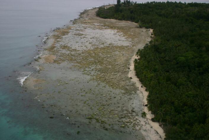 Dette området hevet seg 73 centimeter under jordskjelvene i 2007. (Foto: Science)