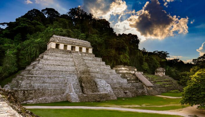 Nasjonalparken Palenque i Mexico ble forskernes arena.