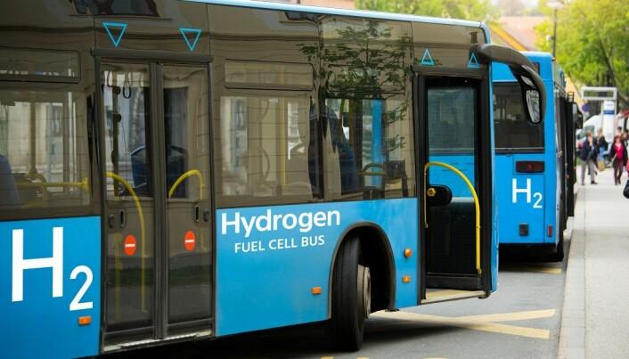 Hydrogenbusser er et vanlig syn flere steder i verden. Men produksjonen av hydrogen er ofte ikke miljøvennlig.