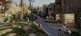 Hva kjennetegner klimavennlige nabolag?