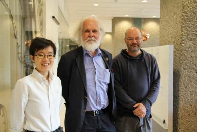 Ruiyun Li, Nils Chr. Stenseth og Ottar Bjørnstad står bak studiene.