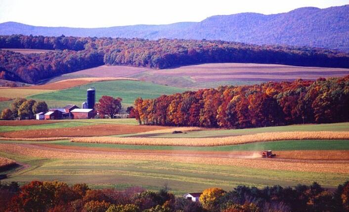 """""""Det brukes store mengder atrazin i landbruk rundt om i verden. Bildet viser åkre i Pennsylvania i USA. (Foto: Scott Bauer/ Agricultural Research Service/ Wikimedia Commons)"""""""