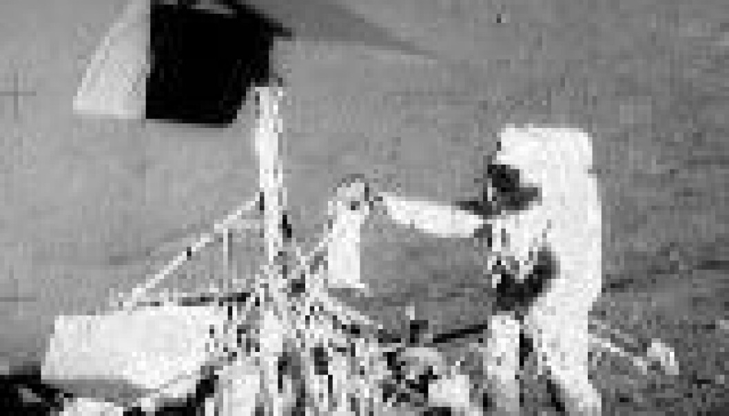 """Månelanding med Apollo 12. (Foto: NASA)"""