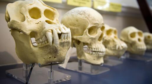 Nå tror de fleste amerikanere på evolusjon
