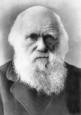 Charles Darwin anses som grunnleggeren av moderne evolusjonsbiologi.