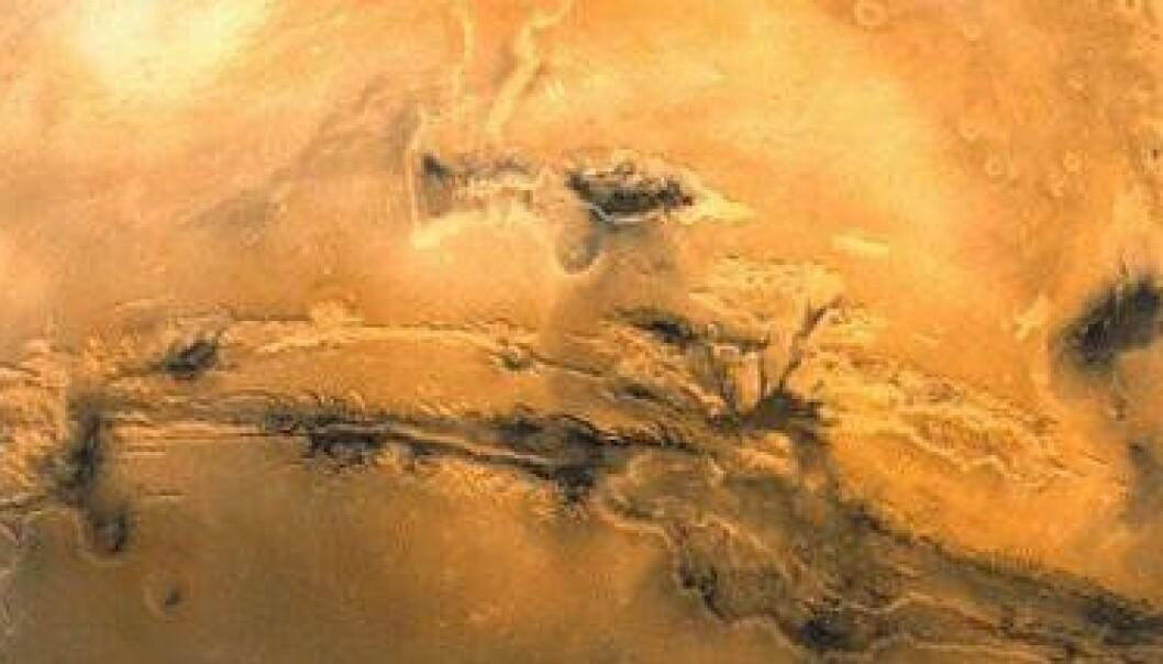 Mars. (Foto: JPL/NASA)