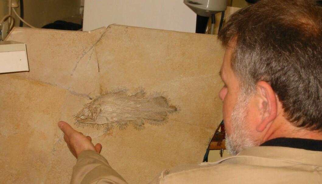 Et levende fossil på Tøyen?