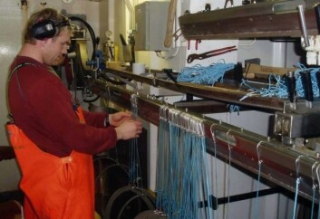 Å sortere linekroker er en tidkrevende jobb. Maskinsyn kan avsløre 97,5 prosent av de defekte krokene. (Foto: Aqua Gen AS)