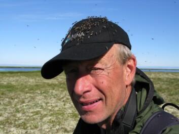 Tverrfagligheten i Økosystem Finnmark var både krevende og spennende, mener prosjektleder Rolf Anker Ims ved Universitetet i Tromsø.