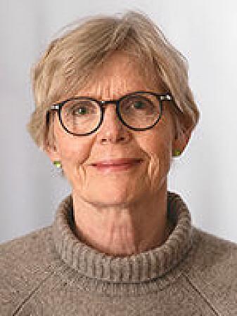 - Historiske romaner er et møte mellom to tidshorisonter - forfatterens nå og fortidens da, ifølge professor i litteratur Anne Birgitte Rønning ved UiO.