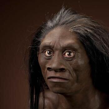 """Omtrent slik så kanskje <span class="""" italic"""" data-lab-italic_desktop=""""italic"""">Homo floresiensis</span> ut."""