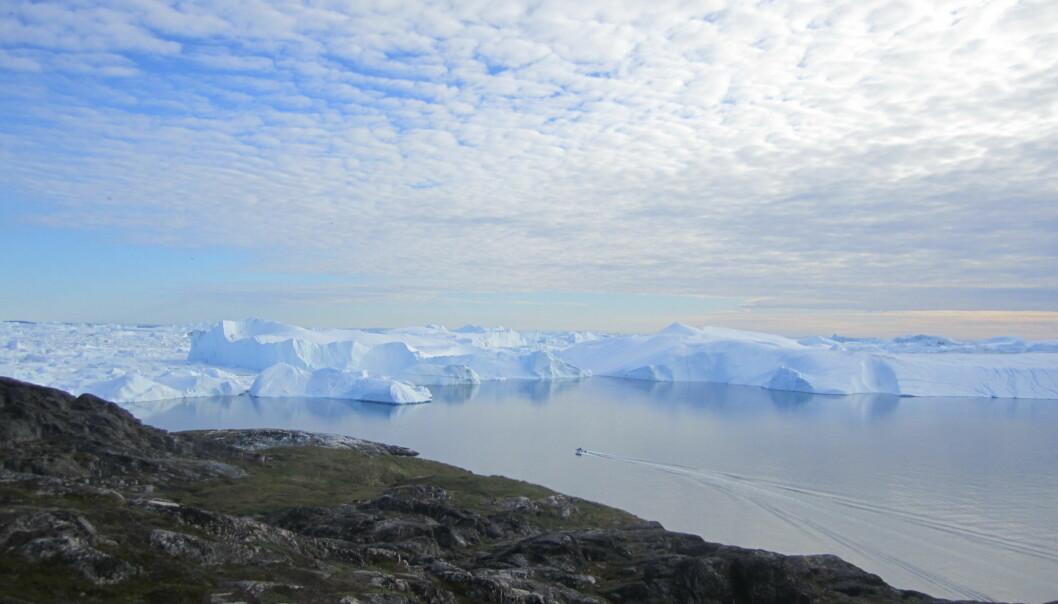 Jakobshavn-isbreen på Grønland.