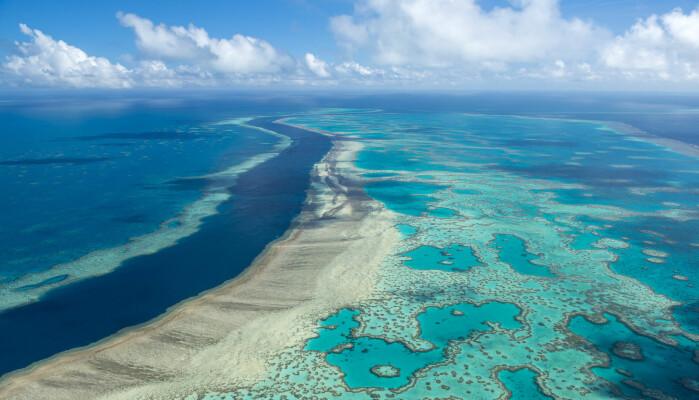 Great Barrier Reef er 2600 kilometer langt og kan sees fra verdensrommet. Nå er korallene truet av klimaendringene.