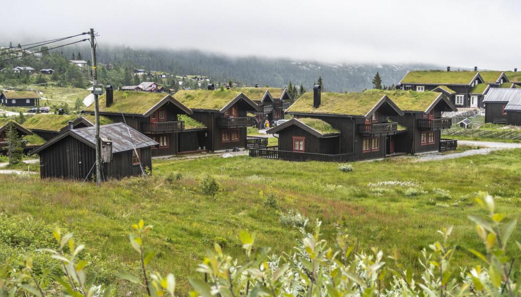 Skal vi fortsette hyttebyggingen i Norge må hyttene bli mindre og de må ligge tettere, mener forsker. Disse hyttene ligger i Eggedal i Sigdal kommune.