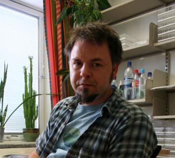 Stipendiat Trond Elling Barstad forsker på bladveps. På kontoret sitt klekker han ut flere individer i løpet av vinteren. – Om det så er julaften så kommer jeg innom kontoret for å sjekke om de er kommet ut, forteller han. Foto: Randi M. Solhaug