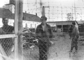 Bildet viser en sovjetisk fange i leiren på Falstad i Nord-Trøndelag. På Falstad satt omlag 1 000 utenlandske fanger under krigen, nærmere 180 av dem ble skutt i Falstadskogen. (Foto: Falstadsenteret)