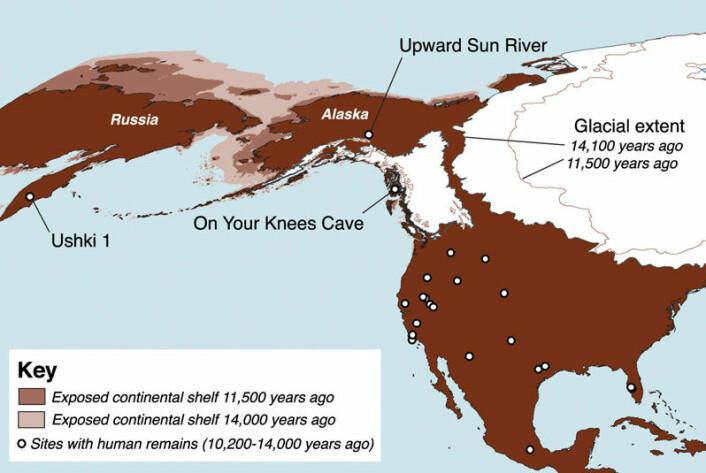 Kart som viser plasseringen av Upward Sun River, sentralt i Alaska. Andre steinalderfunn i Nord-Amerika er markert med hvit prikk. Ushki på Kamtsjatka er markert i venstre kant av kartet. Lys brun og mellombrun farge viser havnivået for 14 000 og 11 500 år siden. Utstrekningen av de to store iskappene som lå over Nord-Amerika er også markert. Klikk på forstørrelsesglass for større versjon. (Illustrasjon: Ben A. Potter, University of Alaska Fairbanks/Science/AAAS)