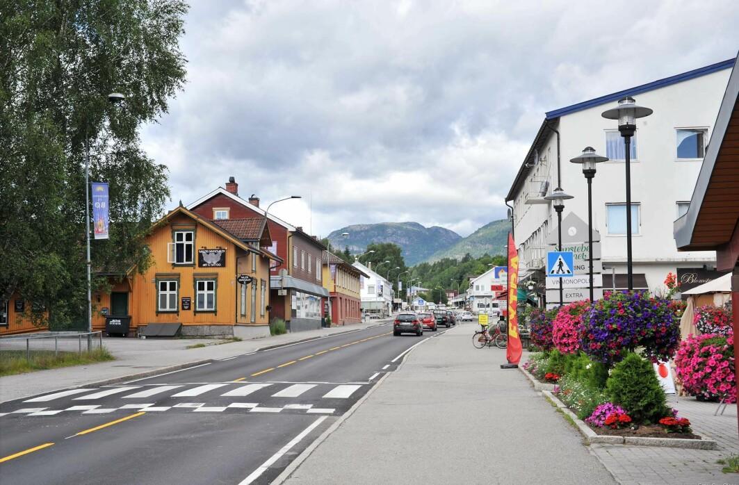 Forskere prøver å finne ut av hvilke klimatiltak som funker best på bygda, for eksempel i Midt-Telemark (tidligere Bø kommune).