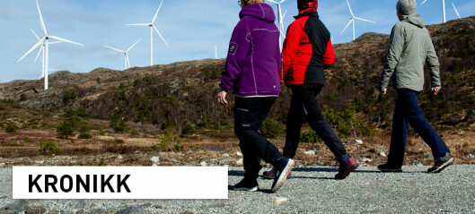 Vi må diskutere hva som rettferdiggjør utbygging av vindkraft i norsk natur
