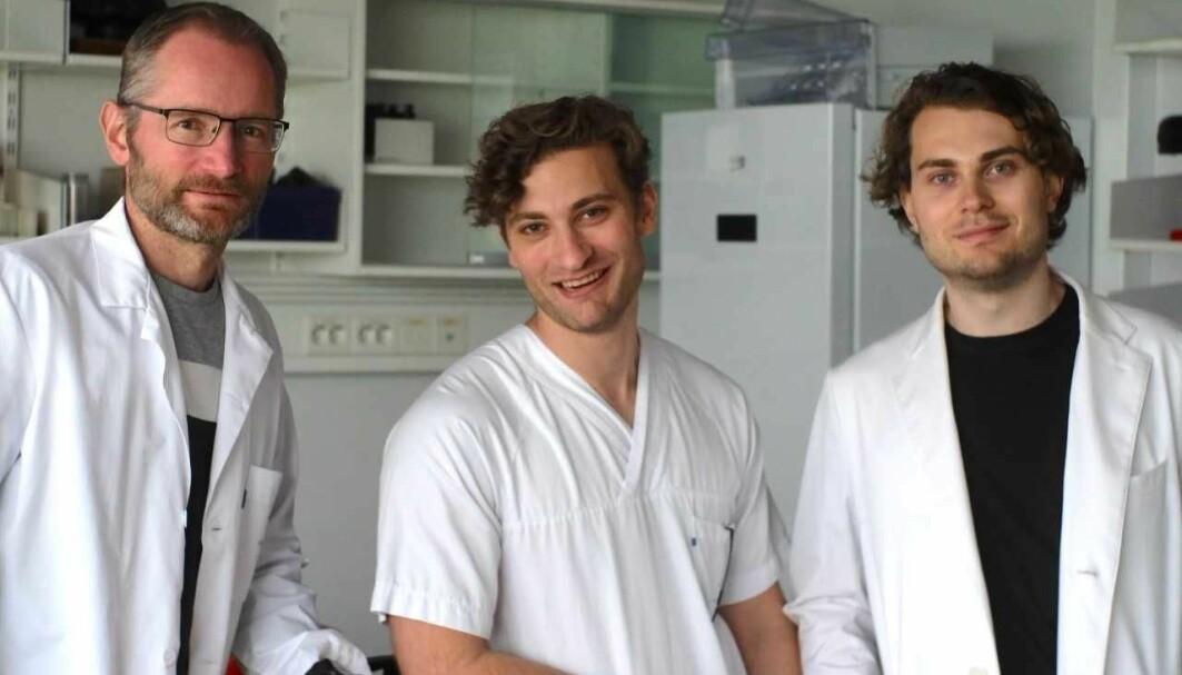 Karl Johan Tronstad, August Hoel og Fredrik Hoel er blant forskerne som har deltatt i den nye studien.