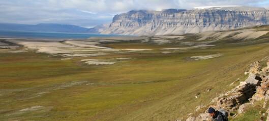 Arktis blir stadig grønnere