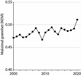 Tidsserie for sesongens høyeste grønnhet for perioden 2000 til 2020 for hele det arktiske området, inkludert Finnmarkskysten, Bjørnøya, Jan Mayen og Svalbard.