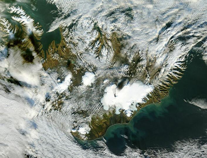 Et satellittbilde fra NASA viser askeskyer som stiger opp fra Grímsvötn under utbruddet i 2004. (Foto: NASA)