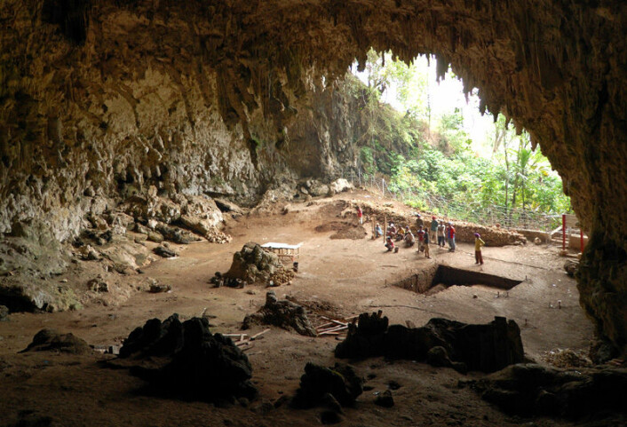 """Hulen på øya Flores i Indonesia, hvor Homo floresiensis ble funnet i 2003. (Foto: Rosino, Creative Commons)"""