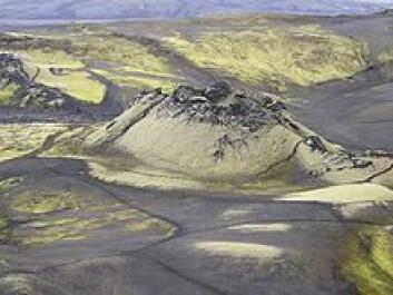 Laki-sprekkene på Island ble dannet ved ett av verdenshistoriens mest katastrofale vulkanutbrudd, i 1783-84. Vulkanen Grimsvötn er tett forbundet med disse sprekkene, og er en del av samme vulkanske system. (Foto: Juhász Péter, Wikipedia)