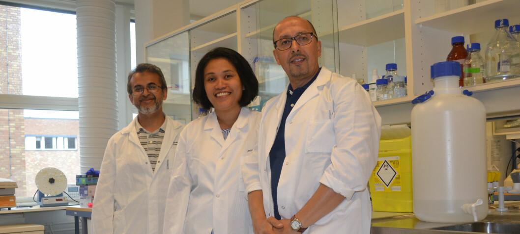 Nå vet forskerne hvorfor hjernen sveller ved leverskade