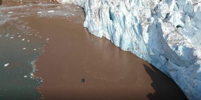 Det brunfargede smeltevannet foran isbreer inneholder næringsrik mat for flere arktiske dyrearter som lever i eller tett på havet. Midt i bildet vises en robot, sendt dit av forskere for å undersøke vannet foran breene.