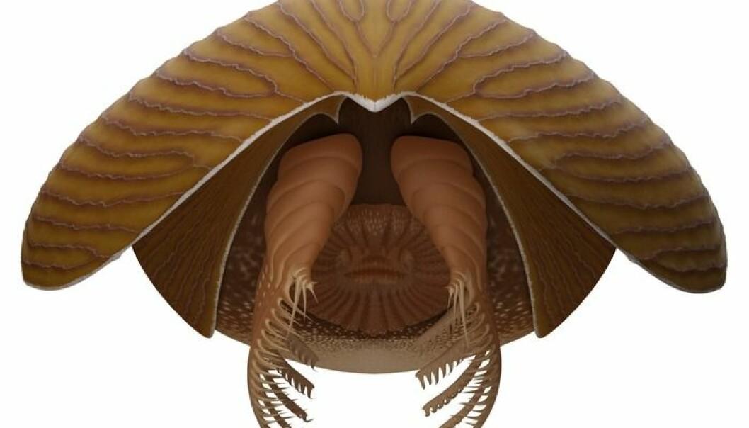 Skapningen hadde munn formet som en ananas-ring og armer med klør.