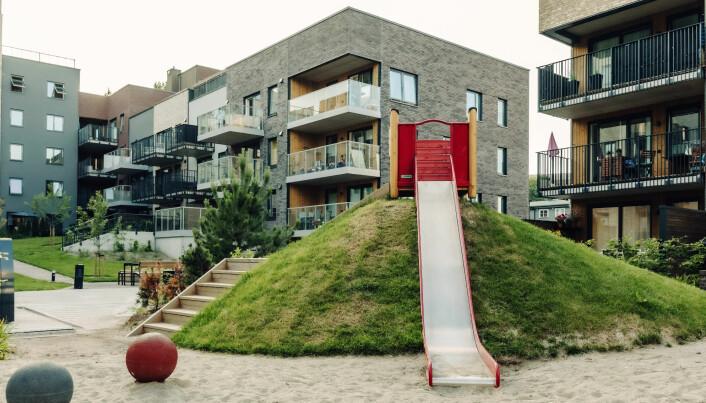 Lave renter har vært med på å drive opp prisen på boliger, ikke minst små boliger som kan være innenfor rekkevidde for unge boligsøkere. Her fra Frysjaparken i Oslo.