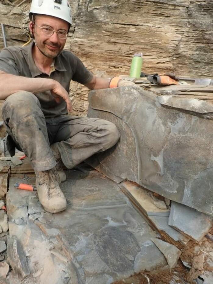 Her er forskeren Jean-Bernard Caron med en fossil de har funnet av det urgamle dyret.