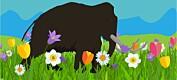 Blomstene trivdes bedre da de ble tråkket på av mammuter