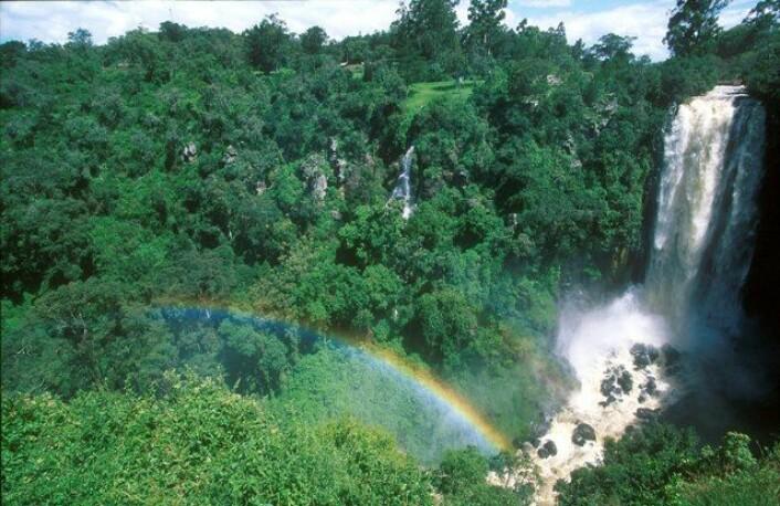 (Foto: www.colourbox.no)