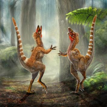 """""""Det er disse dinosaurene Vinther er usikker på om har fått riktig farge. (Illustrasjon: Chuang Zhao og Lida Xing)"""""""