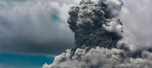 Mass extinction likely caused by lethal temperatures due to volcanic CO2 venting